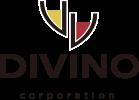ディヴィーノ 株式会社